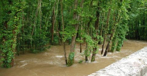 Inondation de 2016